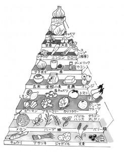 「デザイナーフーズ・プログラム」を元にしたピラミッド
